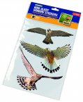 Gardman Bird Alert Window Stickers Pack of 6