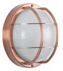 Pacific Lifestyle Dianthus Copper Metal and Frosted Glass Bulk Head Wall Light