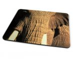 Kico Animal Placemat - Elephant
