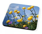 Kico Flower Coaster - Mountain Flowers