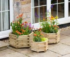 Zest4Leisure Marford Hexagonal Planter Set of 3