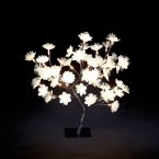 Snowtime Fibre Optic Flower Display Gold with 48 LED - Warm White