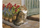 Creative Tops Standard Tablemats (Set of 6) Cottage Cat