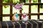 Smart Garden Bobbly Beasties -  Assorted