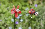 Smart Garden Looney Stakes - Assorted Ladybugs