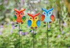 Smart Garden Looney Stakes - Assorted Owlets