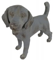 Solstice Sculptures Dog Standing 34cm Blue Iron Effect