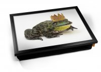 Kico Animal Cushion 32 x 41cm Lap Tray  - King Frog