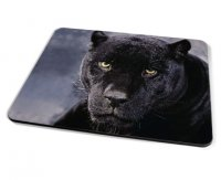 Kico Animal Placemat - Black Cat