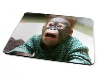 Kico Animal Placemat - Funny Monkey