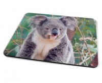 Kico Animal Placemat - Koala Bear
