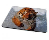 Kico Animal Placemat - Tiger In Water
