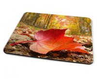 Kico Nature Placemat - Red Leaf