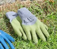 Smart Garden All Seasons Sage Medium Glove -Size 8