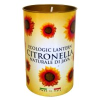 Price's Citronella Fragrant Lantern