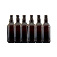 Young's Ubrew Beer Bottles (Pack of 6) - Brown