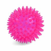 Petface Toyz Space Ball Pink - Small