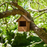 Robin Nest Box (Smart Garden)