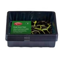 Ambassador Small Seed Tray Pack of 10