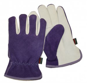Town & Country Premium - Leather & Suede Ladies Gloves