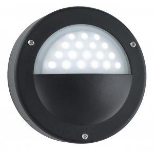 Searchlight Garden LED Black Wall Light with Acid Glass