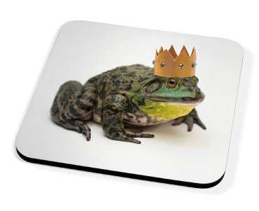 Kico Animal Coaster - King Frog