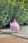 Smart Garden Bobbly Bird - Assorted