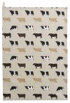 Sophie Allport Tea Towel - Cows